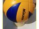#iorestoacasa. Caramagna Volley Team, scatta il primo torneo di Web Training