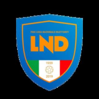 Calcio dilettantistico, i meccanismi di promozione e retrocessione dall'Eccellenza alla Seconda Categoria per la stagione 2019/2020
